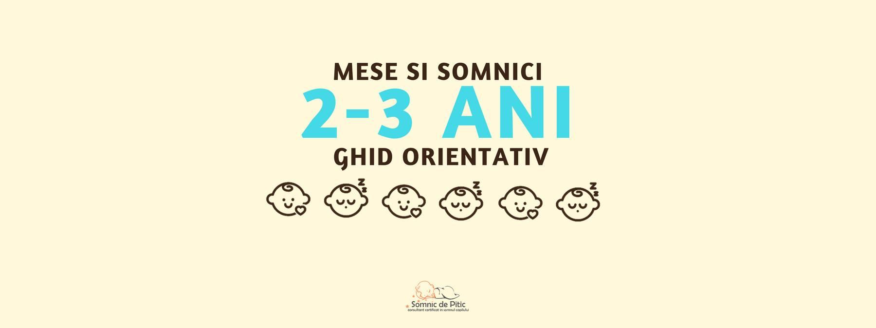 banner mese si somn copii 2-3 ani